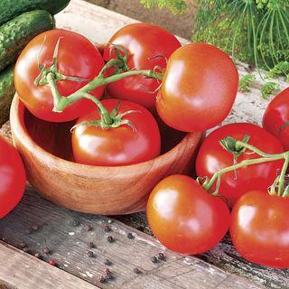 Celebrity Hybrid Tomato Seeds Image