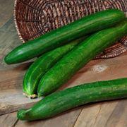 Tasty Green Hybrid Cucumber Seeds Thumb
