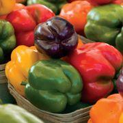 Park's Sweet Rainbow Mix Pepper Seeds Thumb