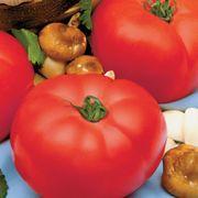 Beefmaster Hybrid Tomato Seeds Thumb