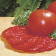 Better Bush Hybrid Tomato Seeds Alternate Image 1