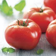 Mater Sandwich Organic Hybrid Tomato Seeds Thumb