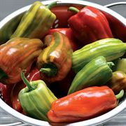 Candy Cane Red Pepper Seeds Thumb