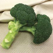 Green Magic  Hybrid Broccoli Seeds Thumb