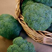 Castle Dome Hybrid Broccoli Seeds Thumb