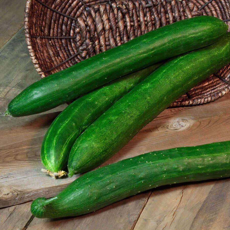 Tasty Green Hybrid Cucumber Seeds Image