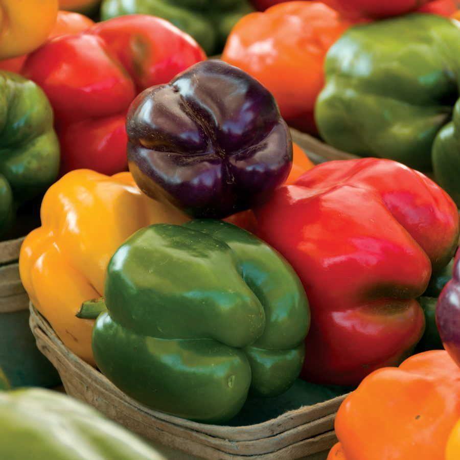 Park's Sweet Rainbow Mix Pepper Seeds Image