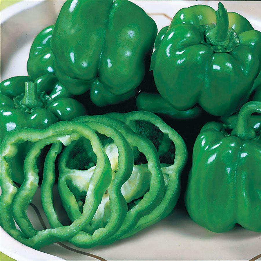 California Wonder Pepper Seeds Image