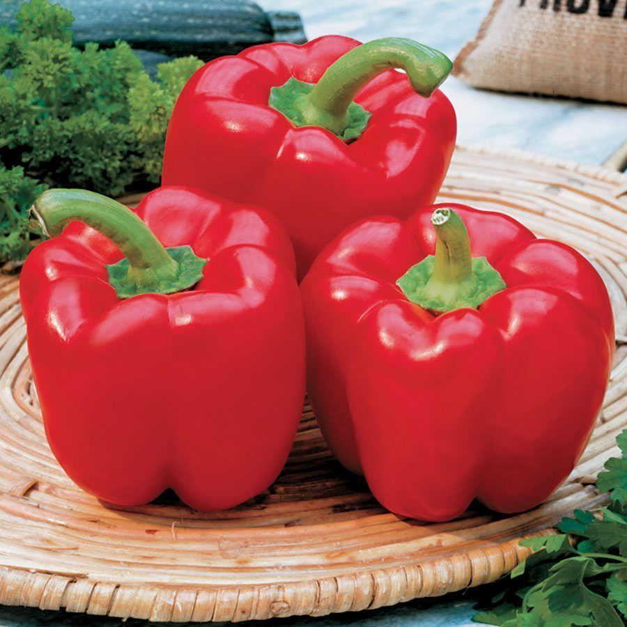 Karma Hybrid Pepper Seeds Image