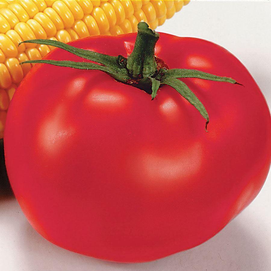 Better Boy Hybrid Tomato Seeds Image