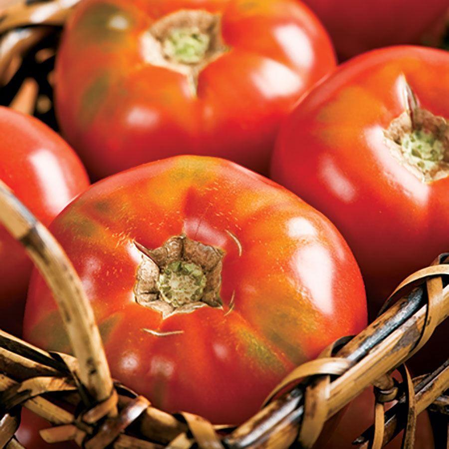 Burpee Big Boy Hybrid Tomato Seeds Image
