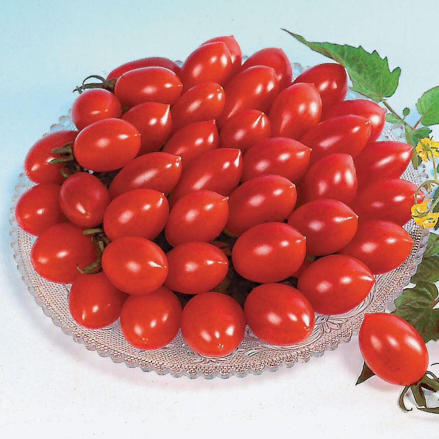 Sugary Cherry Tomato Seeds Image