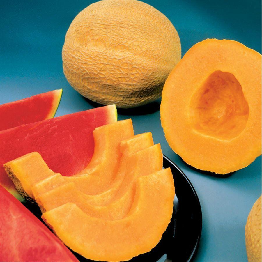 Park's Whopper Hybrid Melon Cantaloupe Seeds Image