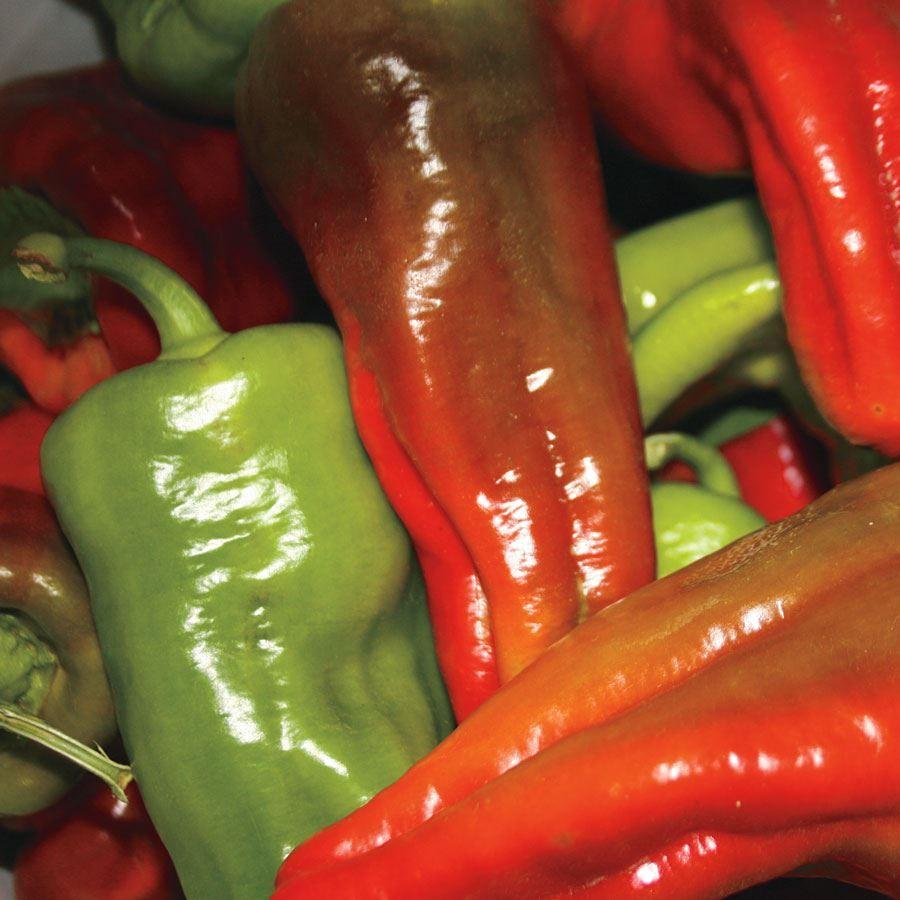 Hungarian Wax Organic Pepper Seeds Image