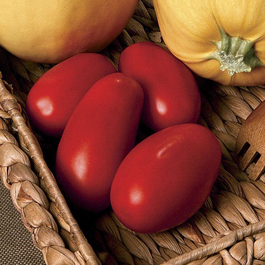 Supremo Hybrid Tomato Seeds Image