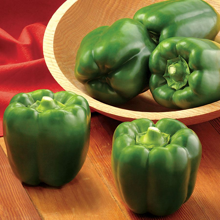 BAYONET Hybrid Pepper Seeds Image