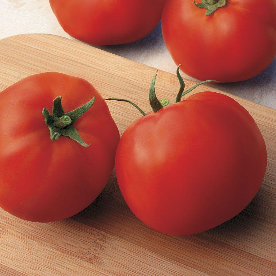 Big Yummy Hybrid Tomato Seeds Image