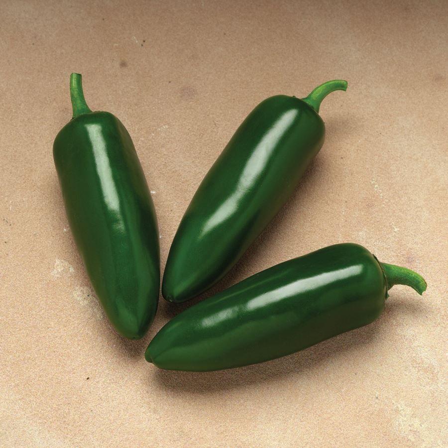 Jalafuego Hybrid Pepper Seeds Image