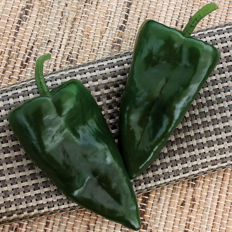 Trident Hybrid Pepper Seeds Image