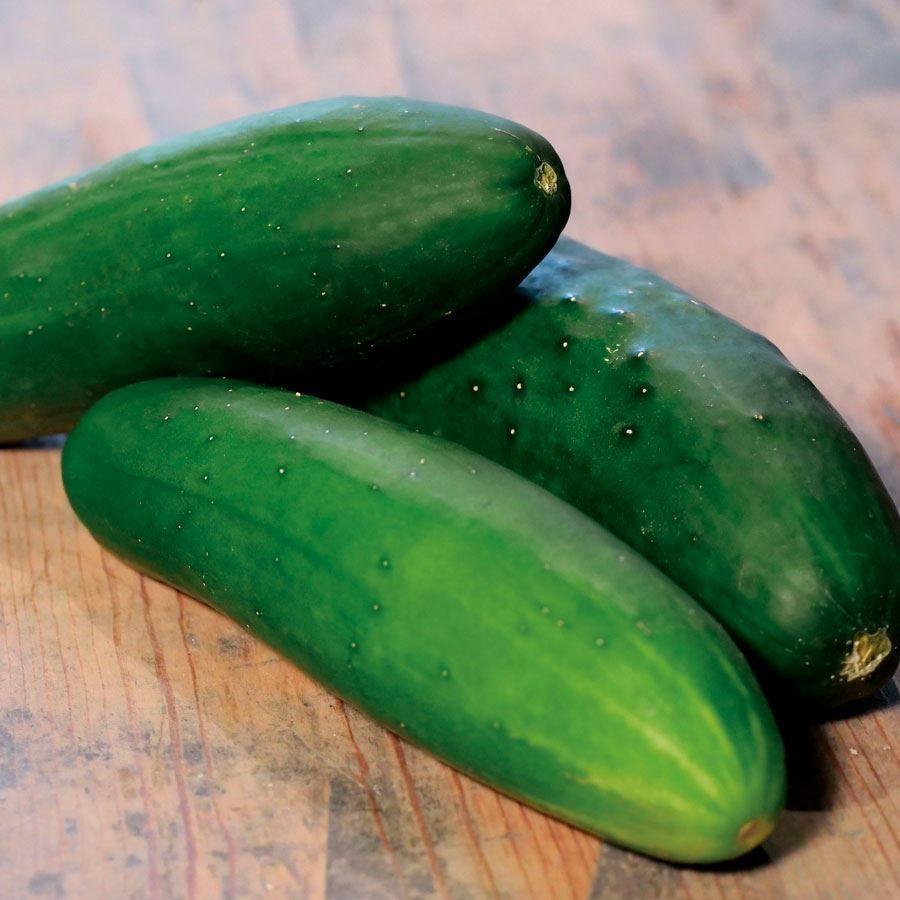 Park's Whopper II Hybrid Cucumber Seeds Image